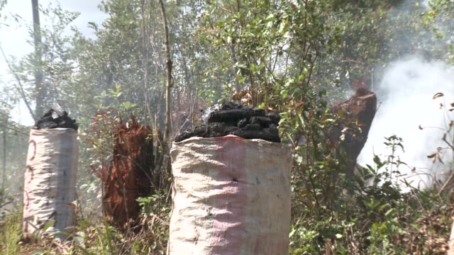 vídeos y material grabado en eventos de stock de smoke billows around bags of burnt wood. available in hd. - madagascar