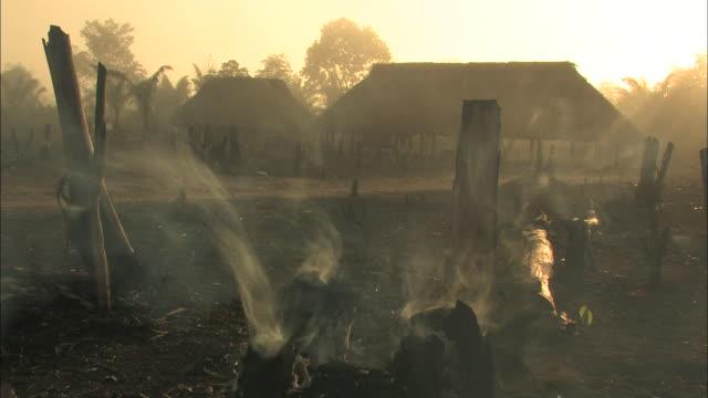 smoke billows from a burning tree stump. - cricket stump stock videos & royalty-free footage