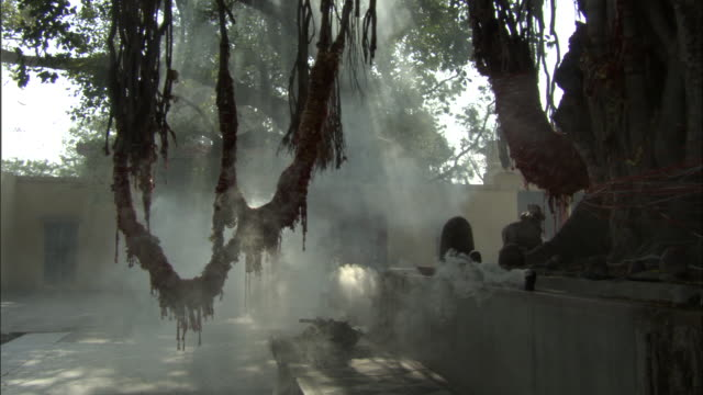 vídeos de stock, filmes e b-roll de smoke billows from altar, rishikesh available in hd. - rishikesh