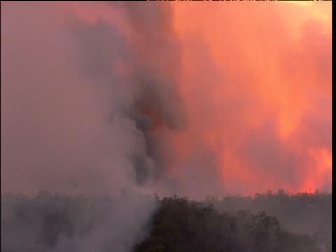 Smoke billows from raging bush fire near Sydney, Australia