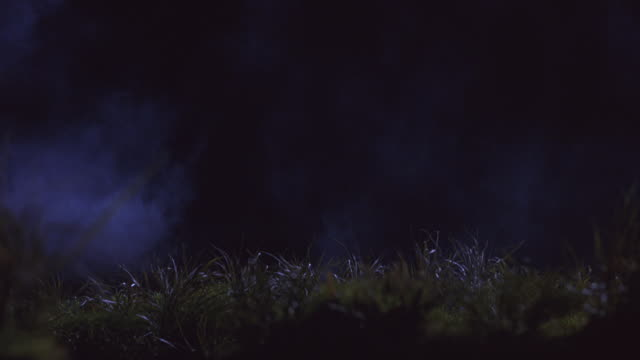 smoke blows across a grassy field. - 前ボケ点の映像素材/bロール