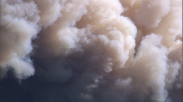 smoke cloud billows up from forest fire, yellowstone, usa - smoke physical structure stock videos & royalty-free footage