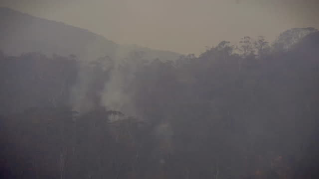 """smoke hangs over the hills after bush fires have passed through small hamlet in new south wales - """"bbc news"""" stock videos & royalty-free footage"""
