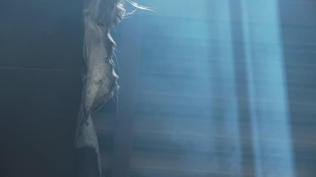 smoke in the factory, lighting effect - 北チロル点の映像素材/bロール