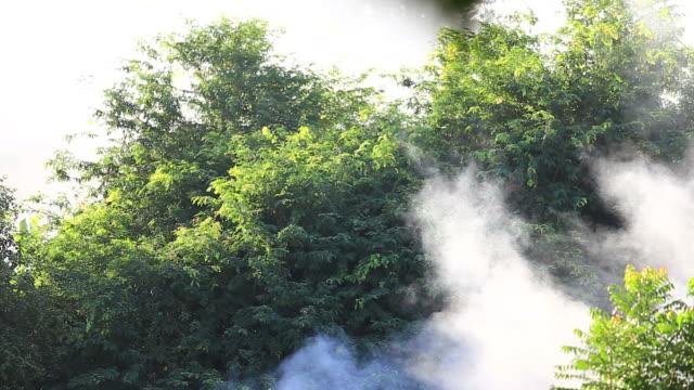 Rauch von Holzfeuer