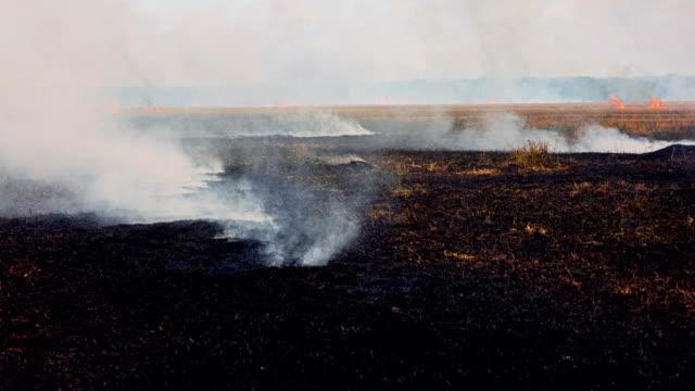 Smoke over black burned field