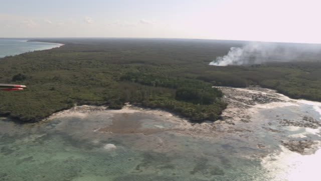 smoke rises from a forested area, zanzibar - zanzibar archipelago stock videos & royalty-free footage