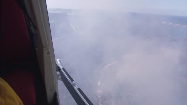 vídeos de stock, filmes e b-roll de smoke rises from an australian bushfire. - victoria austrália