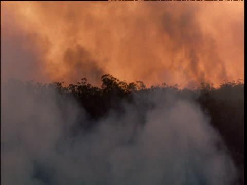 Smoke rises from bush fire near Sydney, Australia