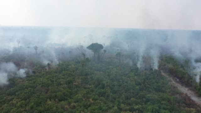 vídeos y material grabado en eventos de stock de smoke rises over parts of the amazon rainforest on sunday in the northwestern brazilian state of rondonia as hundreds of new blazes flare up - amazonas state brazil