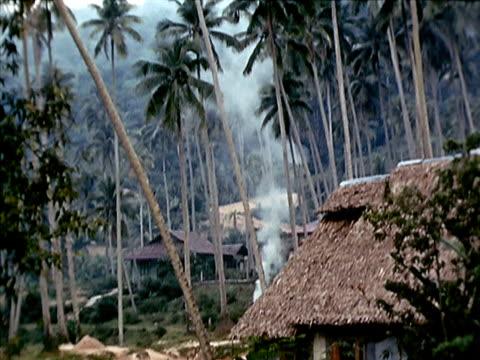 1939 ws smoke rising up from village/ johor, malaysia  - tetto di paglia video stock e b–roll