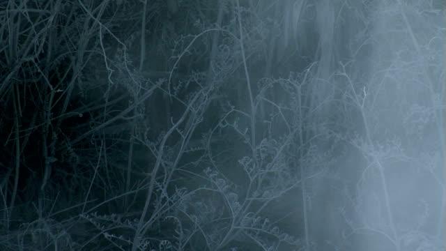 rauch#7 - natürliches thermalbecken stock-videos und b-roll-filmmaterial