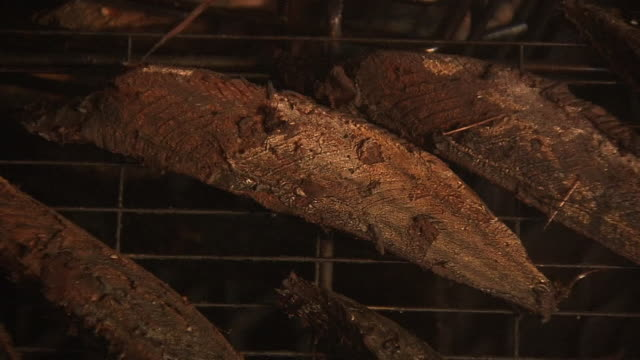 smoked fish in process of making katsuobushi, japan - smoked food stock videos and b-roll footage