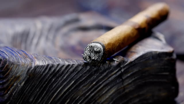 smoking cigar in wooden ashtray - sigaro video stock e b–roll