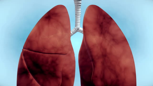 smoking issues in lung - 4k resolution - smoking issues stock videos & royalty-free footage