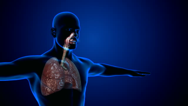 smoking lungs damage - tuberculosis stock videos & royalty-free footage