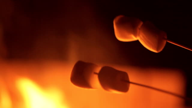 smores roasting marshmallows - camp fire stock videos & royalty-free footage