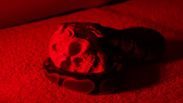 snake and human scull - exoticism stock videos & royalty-free footage
