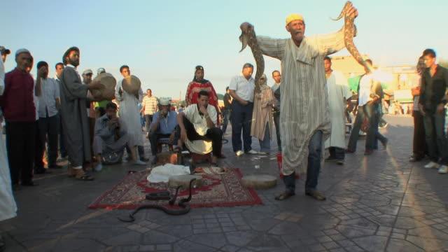 ws snake charmer and spectators in djemaa el fna square, marrakech, morocco - animale da spettacolo video stock e b–roll