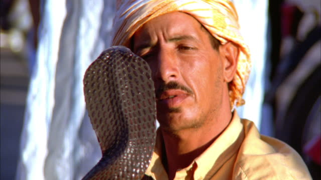 a snake charmer performs with a cobra. available in hd. - schlange kriechtier stock-videos und b-roll-filmmaterial