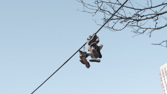 sneakers on a power line - telephone line stock videos and b-roll footage