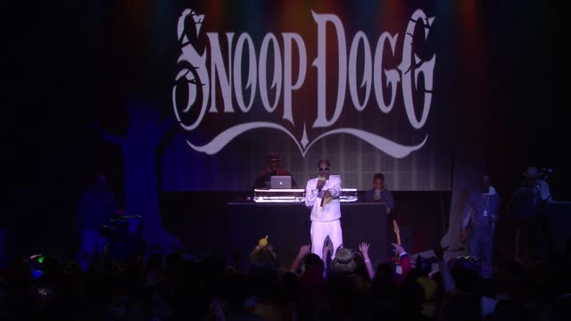 snoop dogg at hilarity for charity's 5th annual los angeles variety show: seth rogen's halloween at hollywood palladium on october 15, 2016 in los... - snoop dogg stock videos & royalty-free footage