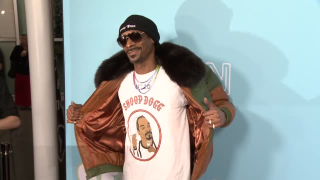 snoop dogg at the los angeles premiere for neon & vice studio's 'the beach bum' on march 28, 2019 in los angeles, california. - snoop dogg stock videos & royalty-free footage