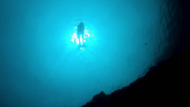 snorkel in the sun - free diving stock videos & royalty-free footage