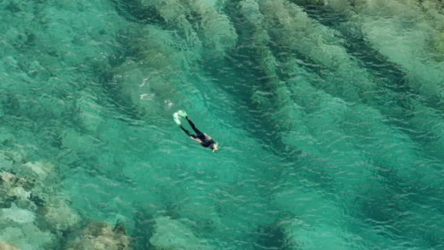 WS AERIAL POV Snorkelers swimming in cove at Lameshur Bay / Saint John, US Virgin Islands, United States