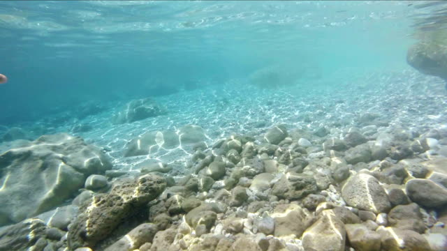 Snorkeling and diving point of view