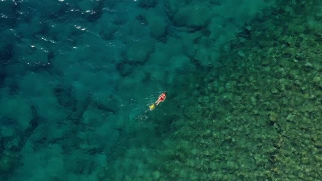 vídeos de stock, filmes e b-roll de snorkeling no mar azul-turquesa desobstruído - natação