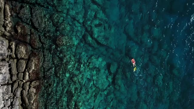 snorkeling in clear turquoise sea - red sea stock videos & royalty-free footage