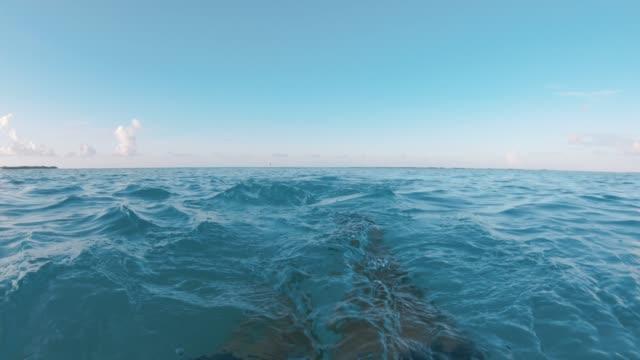 stockvideo's en b-roll-footage met snorkelen in zee van de maldiven - zwemvlies
