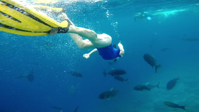 snorkeling in turquoise sea in maldives - snorkelling stock videos & royalty-free footage