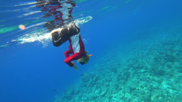 snorkeling in turquoise sea in maldives - underwater diving stock videos & royalty-free footage