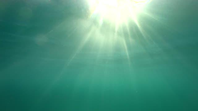 vídeos y material grabado en eventos de stock de snorkeling en punto de vista: clara mar mediterráneo alrededor de córcega - buena condición