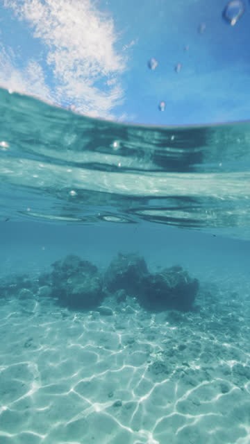 snorkeling point of view in tropical maldives water - vertical stock videos & royalty-free footage