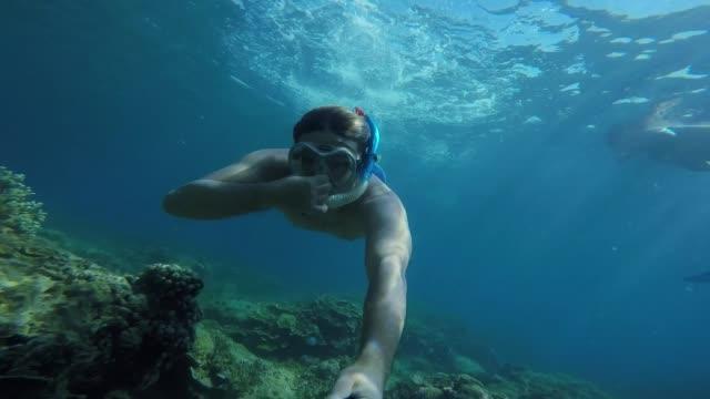 vídeos y material grabado en eventos de stock de bucear - submarinismo