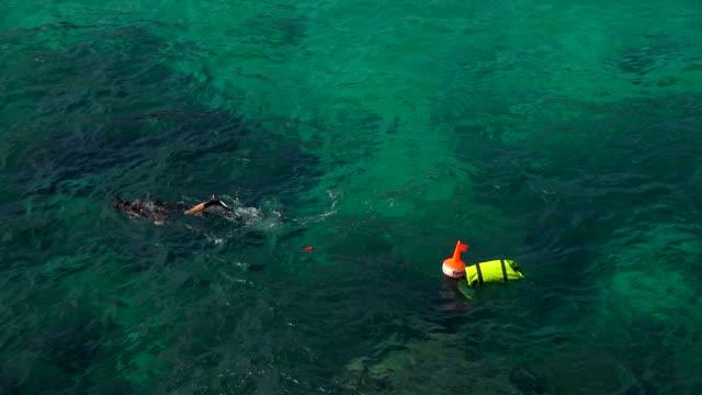 vídeos de stock, filmes e b-roll de snorkeller, cala molins, cala san vicente, majorca, balearic islands, spain, mediterranean, europe - boia equipamento marítimo de segurança