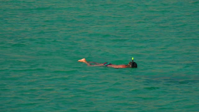Snorkeller, Cala San Vicente, Majorca, Balearic Islands, Spain, Mediterranean, Europe