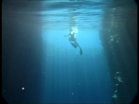 snorkler swimming in sunbeams through water, ms, tonga - schnorchel stock-videos und b-roll-filmmaterial
