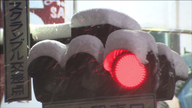 Snow accumulating on a trffic light