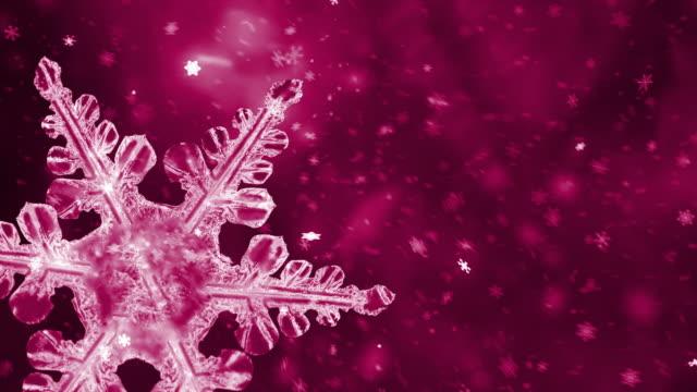 schnee und weihnachtsbaum - schneeflocken stock-videos und b-roll-filmmaterial