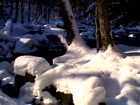 vidéos et rushes de snow and stream in forest - bercement