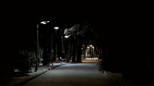 vidéos et rushes de neige dans la nuit - minuit
