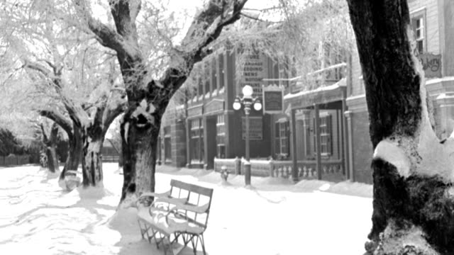 snow blankets a tree-lined sidewalk in a small town. - 1946 stock videos & royalty-free footage
