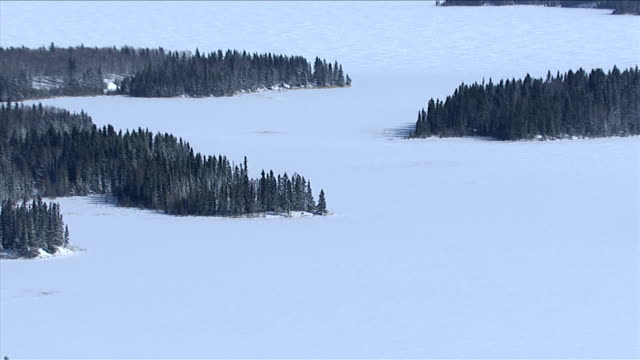Snow blankets a vast frozen lake bordered by dense boreal forests, Canada. Available in HD.