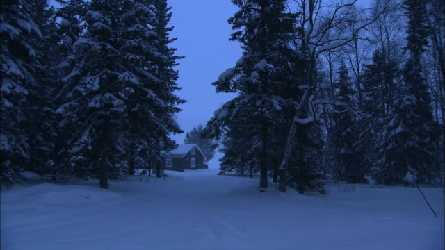 Snow blankets an evergreen forest that borders a cabin in Sweden.