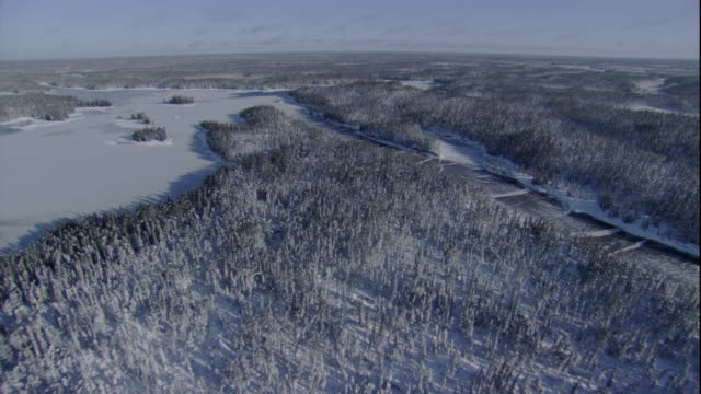 snow blankets canada's boreal forest. - taiga stock videos and b-roll footage