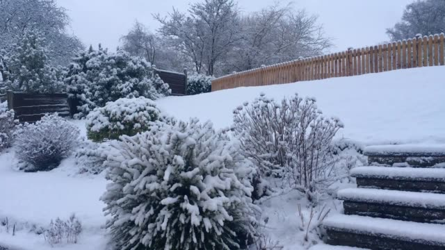 snow blankets stockport in manchester as britain braces for the coldest night of the winter so far the met office warned of disruption with... - stockport bildbanksvideor och videomaterial från bakom kulisserna